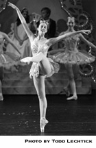 Stephanie Fenz as Dew Drop Fairy
